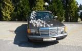auto do ślubu  pruszcz  gdanski