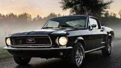 Mustang 67 Limanowa