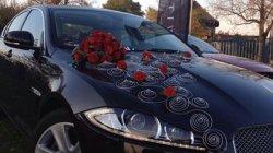 Lux Car Rent Witkowscy Piekary Śląskie