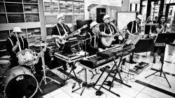 Zespół muzyczny na wesele Fraglesi Lublin