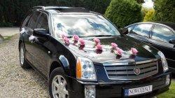 Luksusowy Cadillac do ślubu Września, Poznań