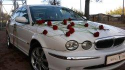 Jaguar Częstochowa