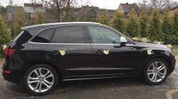 Audi SQ5 313HP !!! Łapy