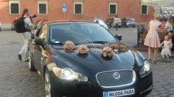 Jaguar XF SV8 angielskim asrystokratą do ślubu! Warszawa