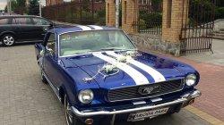 Mustangiem do Ślubu Radzyń Podlaski