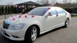 Mercedes S-klasa biala perła do ślubu Białystok