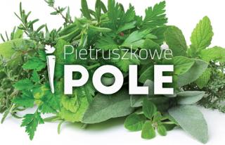 Pietruszkowe Pole Sosnowiec