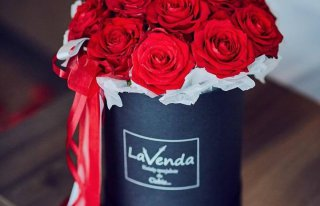 Kwiaciarnia Lavenda Suwałki