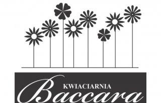 Kwiaciarnia Baccara Czarnków