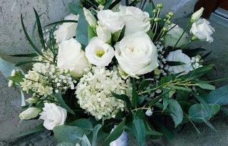Camellia Kwiaciarnia Ryn Ryn
