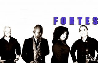 FORTES COVER BAND  Opole