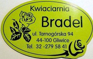 Kwiaciarnia Bradel Gliwice