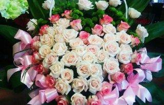 Kwiaciarnia Dafni Lubin Lubin