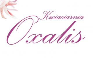 Kwiaciarnia Oxalis Gorzów Wielkopolski