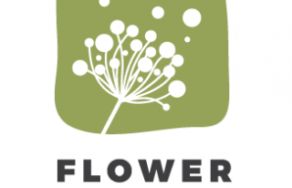 Pracownia Florystyczna Flower Land Kraków