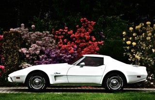 Biała Corvette Skidziń
