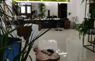 Pracownia fryzjerska MAgnes Bielawa
