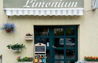 Kwiaciarnia Limonium Tarczyn