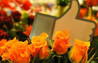 """Kwiaciarnia """"Kalia"""" Parczew Kościelna 92 Parczew"""