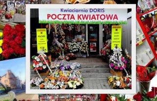 Kwiaciarnia Doris Tarnogród Tarnogród