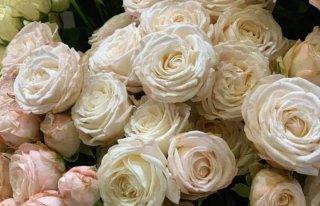 """Kwiaciarnia """"Magia Kwiatów"""" Mierzęcice"""
