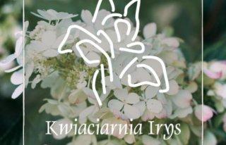 Kwiaciarnia Irys Chrzanów