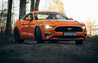 Poprowadź Mustanga do ślubu z Black Horses Car Club Gdynia