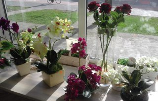 Kwiaciarnia Jula Ełk Ełk