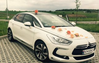Wynajem samochodów ślubnych Kraków