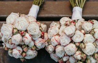 Kwiaciarnia Rosarium Warka