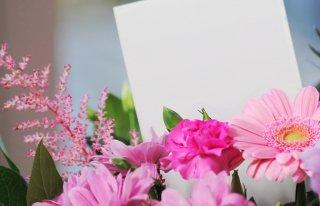 Kwiaciarnia Dalia Stronie Śląskie Stronie Śląskie