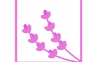 Lavenders Poznań