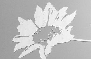 Kwiaciarnia Słonecznik Radom Radom