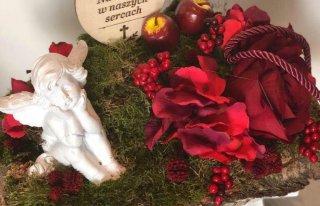 Złocień kwiaciarnia Elbląg stara Dębica Elblag