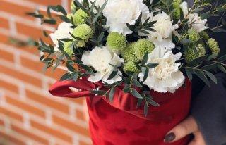A.N.kwiaty Ostrów Wielkopolski