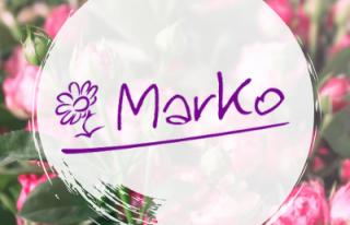 Hurtownia Kwiatów Marko Koszalin
