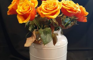 Kwiaty Renaty Międzyrzec Podlaski