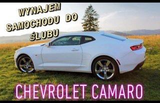 Wynajem Chevroleta Camaro Wodzisław Śląski