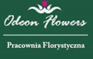 Odeon Flowers Pracownia Florystyczna Kraśnik