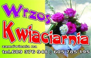 Kwiaciarnia Wrzos Witnica