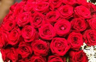 Kwiaciarnia RÓŻA Siedlce
