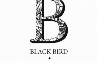 BlackBird_Zaproszenia Kraków
