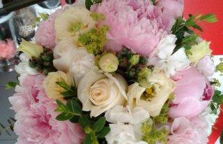 Kwiaciarnia Maczek Bochnia