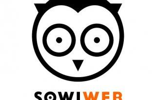 SowiWeb -Owl You Need Kudowa-Zdrój
