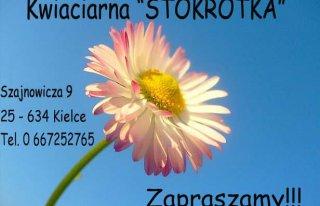"""Kwiaciarnia """"Stokrotka"""" Kielce Kielce"""