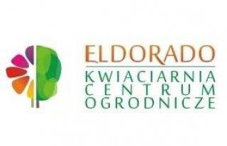 Eldorado Kwiaciarnia Centrum Ogrodnicze Koszalin Koszalin
