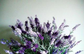 Kwiaciarnia Lawenda Hajnówka