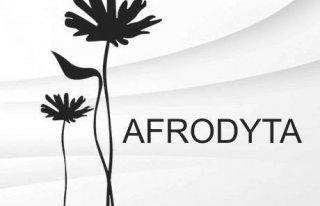 Afrodyta Salon Kosmetyczny Radom