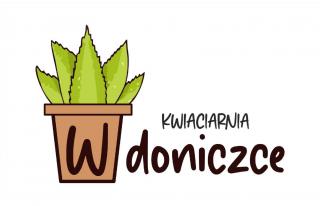 Kwiaciarnia W Doniczce Olsztynek