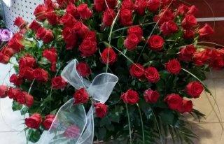 Kwiaciarnia Krosno Odrzańskie Krosno Odrzańskie